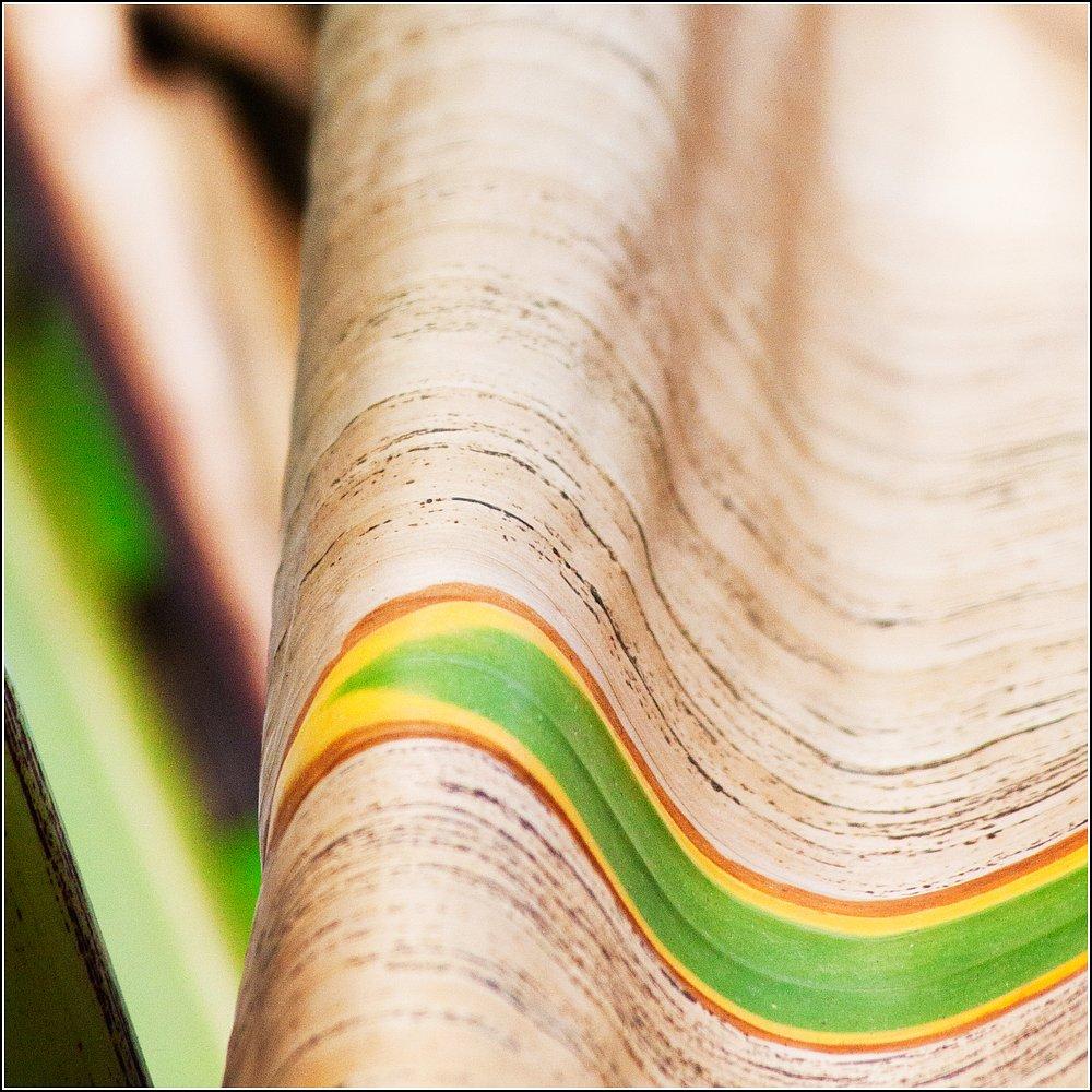green_art #08